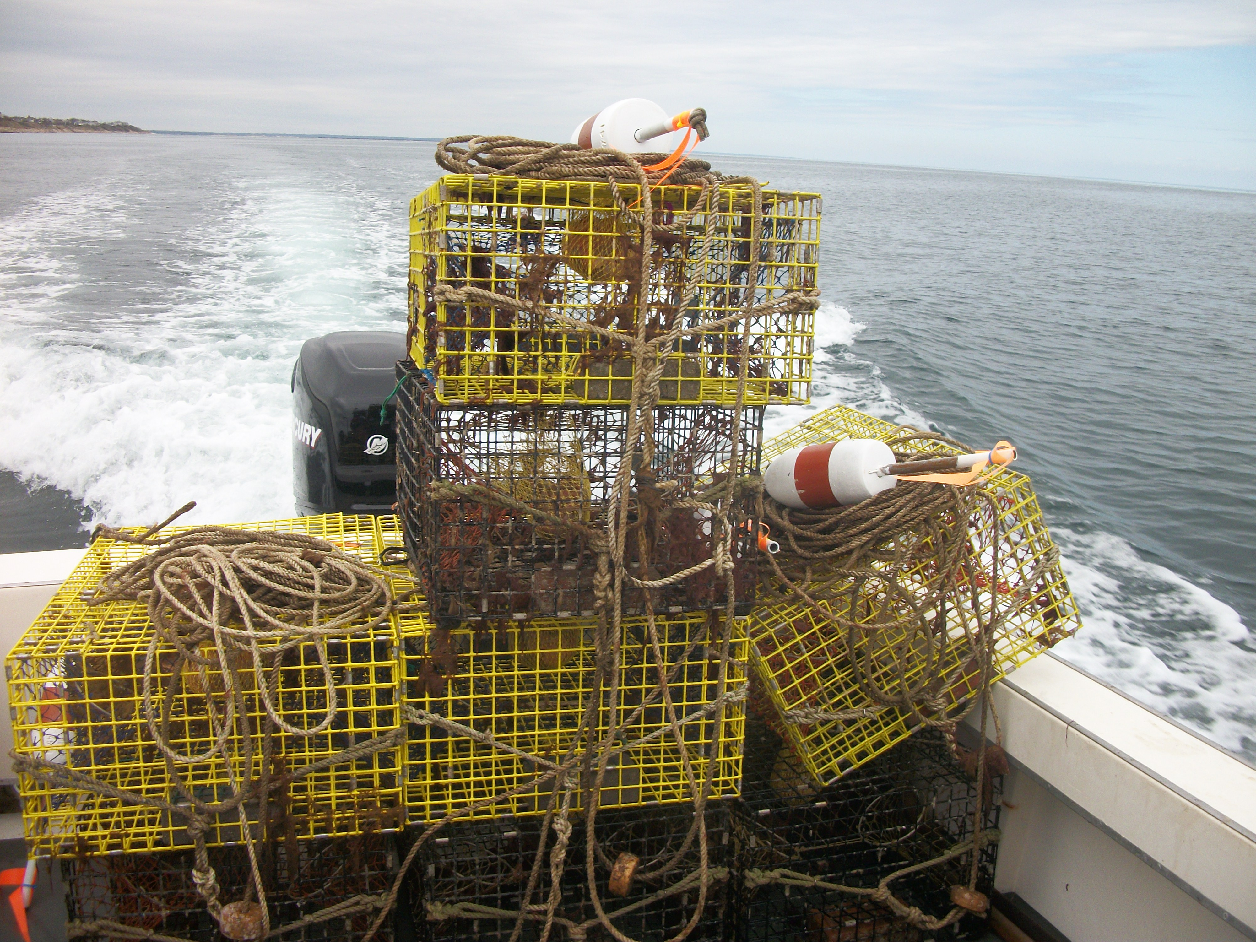 Rent a New England Lobster Trap in Cape Cod Bay